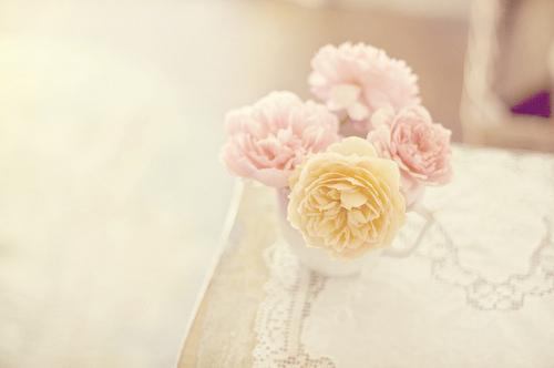 cute-girly-pastel-roses-vintage-favim-com-686461