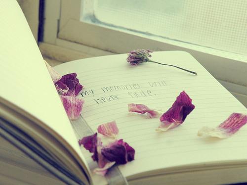 diary-fade-memories-notebook-page-Favim.com-120123